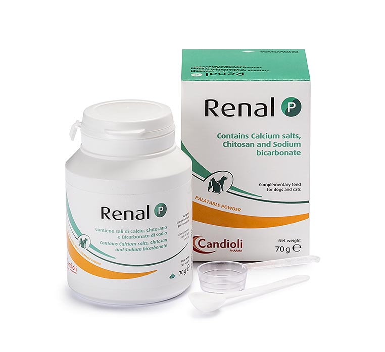 Renal P powder cats and dogs 70 gr