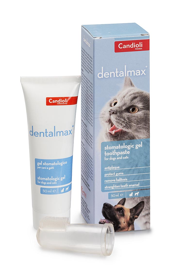 DentalMax toothpaste with chlorhexidine for dogs and cats