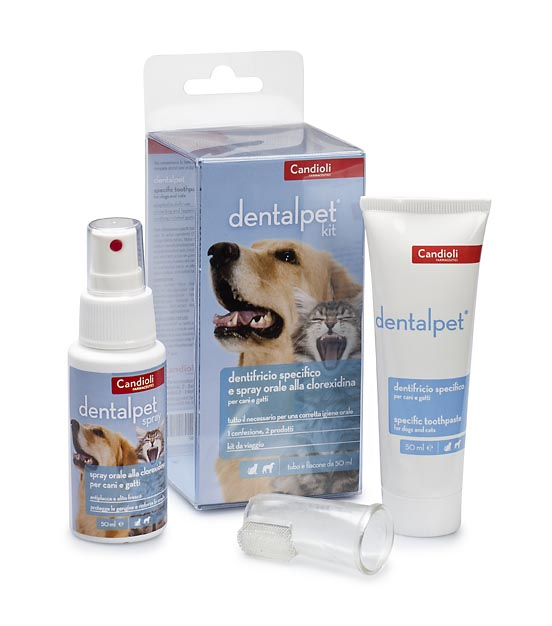 Kit DentalPet - Pasta de dientes, enjuague bucal y cepillo de dientes