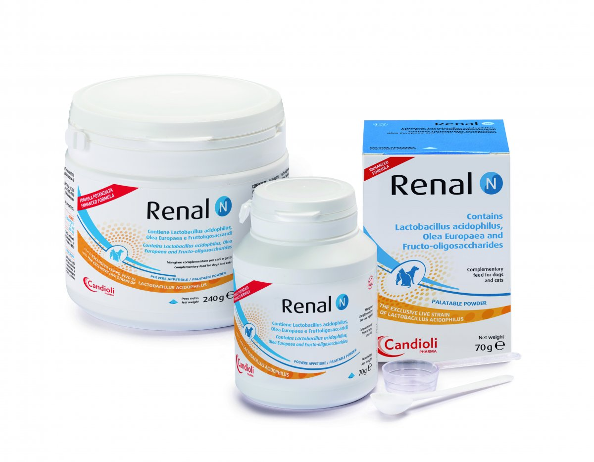 Renal N new ehnanced formula
